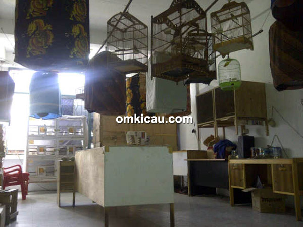 Lauser Bird Shop