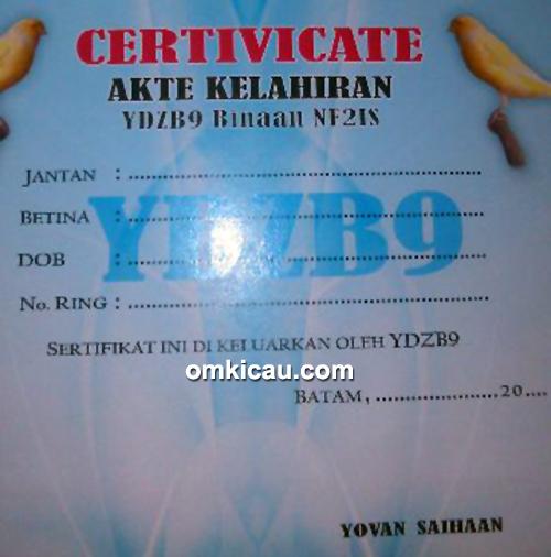 Sertifikat kerjasama NF2IS dan YDBZ9