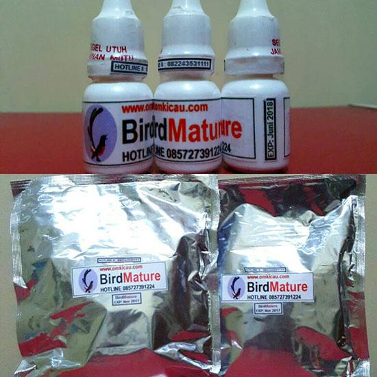 BirdMature