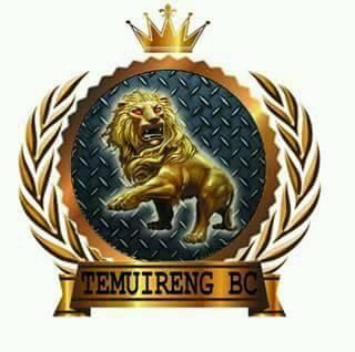 Logo Temuireng BC