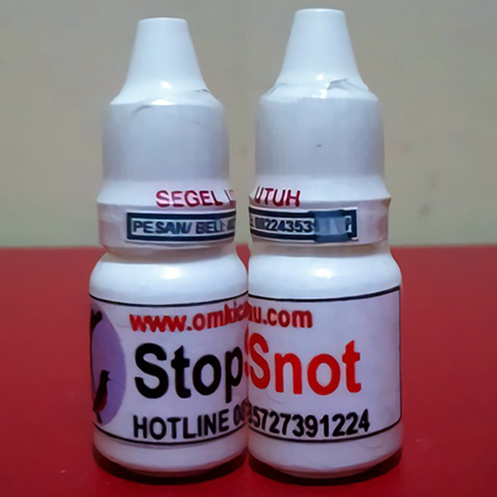 penyakit snot