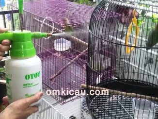 Modifikasi semprotan mandi burung
