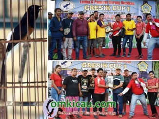 Gresik Cup I