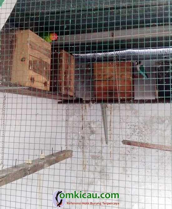 AB Bird Farm Makassar