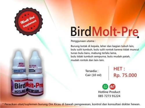 Bird Molt Pre