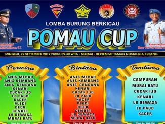POMAU Cup