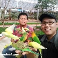 Serunya Diserbu Burung di Palembang Bird Park