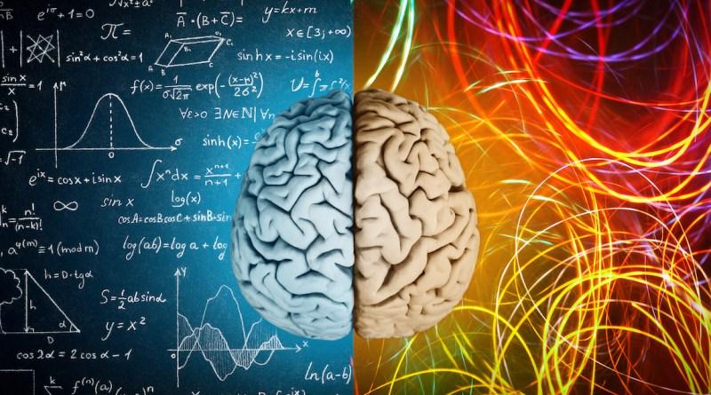 мозг цифры голова