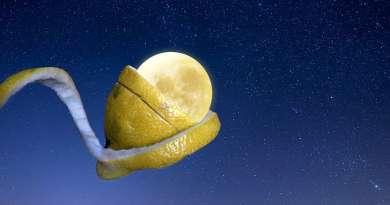 Лимонная кожура