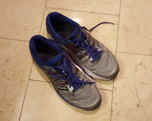 Running Shoes, Surviving a Conference, Boston Marathon Training