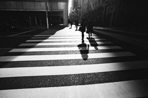 Morning Commute Crosswalk