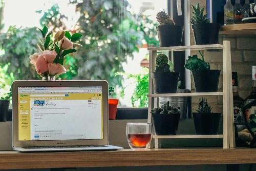 Email Marketing | omnitrek