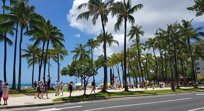 ハワイ子連れ旅行の飛行機、デルタ航空の子どもの食事(トドラーミール)の内容は?