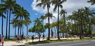 ハワイ子連れ旅行
