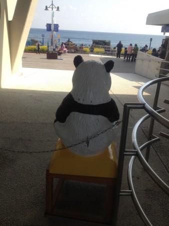 kamogawa-panda