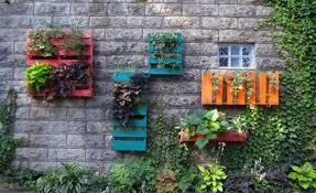 urban garden 3