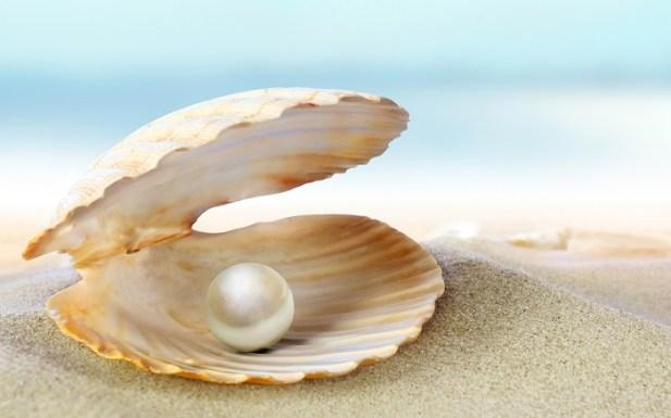 Pearl 1