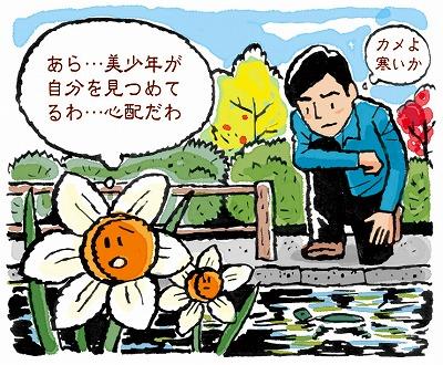 水仙の花に注意
