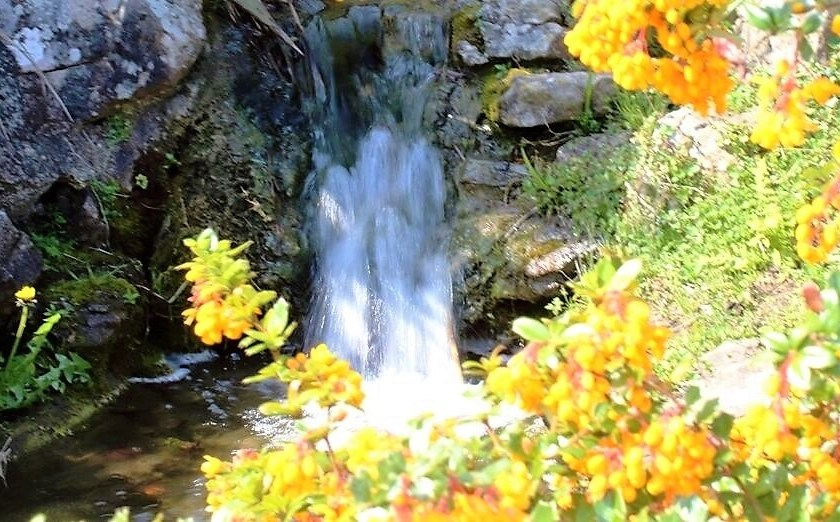 Rockery waterfall with flowers