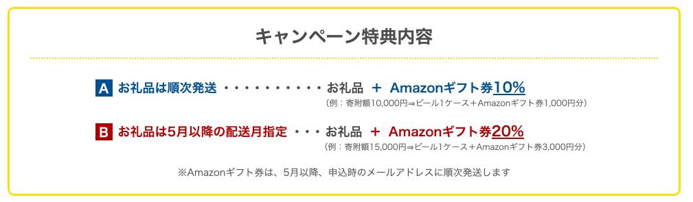 泉佐野市のキャンペーン内容