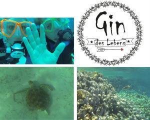Gin des Lebens Fotos und Logo