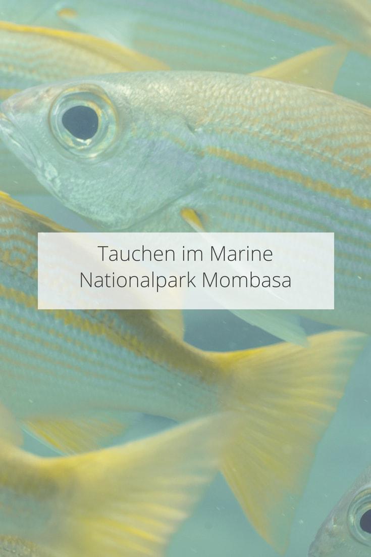 Tauchen Mombasa