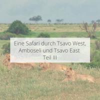 Eine Safari durch Tsavo West, Amboseli und Tsavo East Teil III