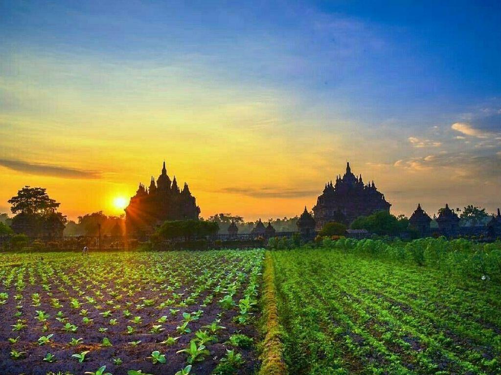 templos-Java-Indonesia