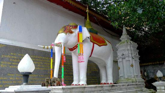 leyenda-elefante-sagrado-blanco-Chiang-Mai