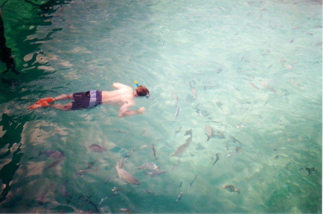 Playas paradisíacas: nuestras playas favoritas Riviera Maya