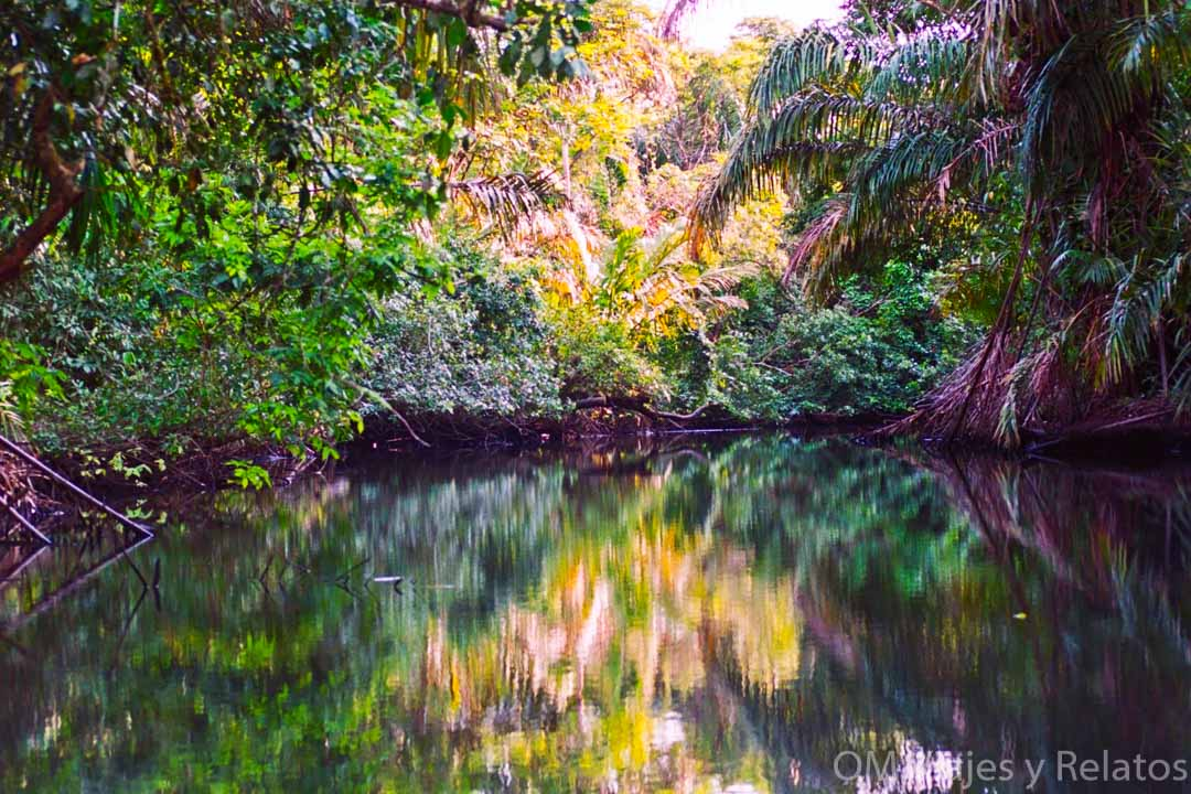 canales-Tortuguero