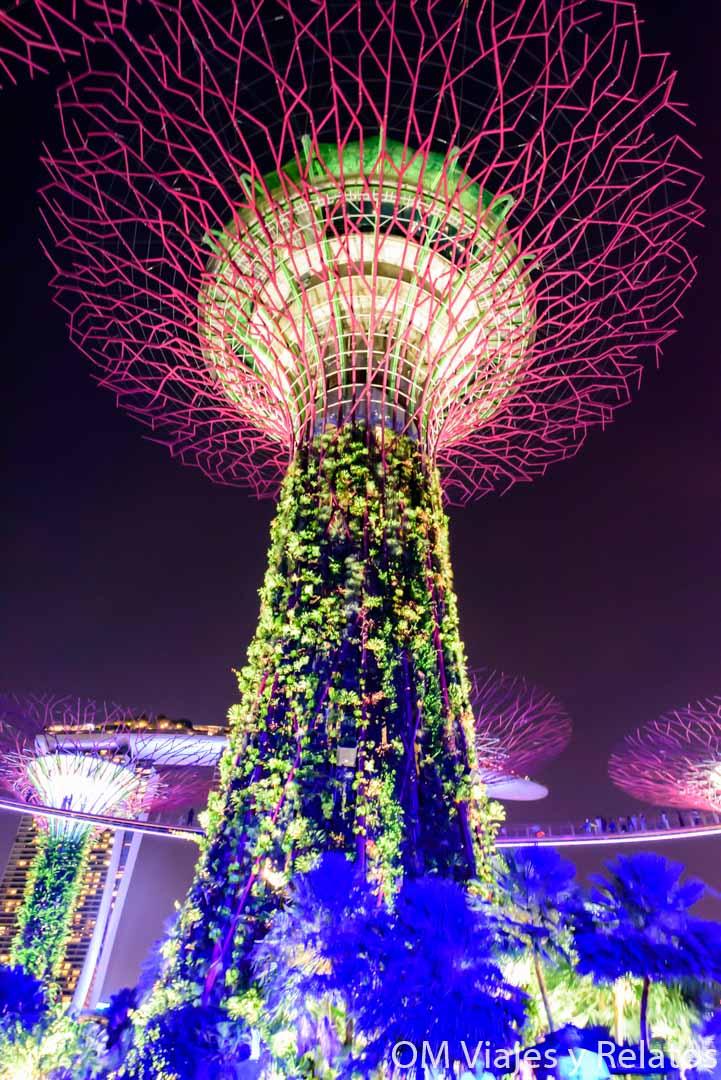 qué-ver-en-Singapur