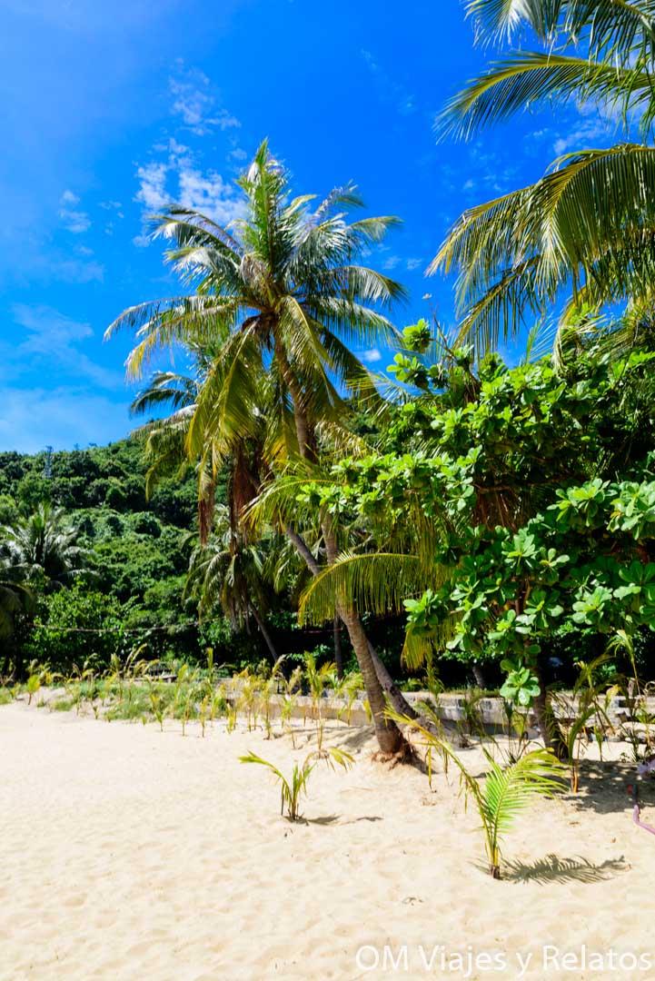 islas Cham