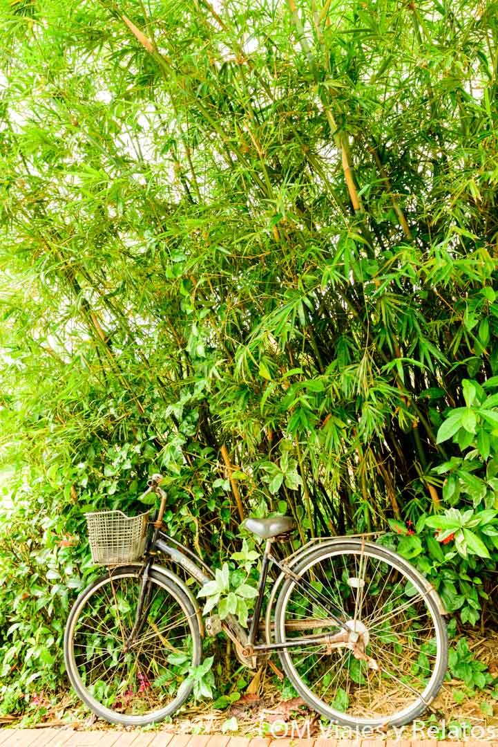 como-moverse-por-vietnam
