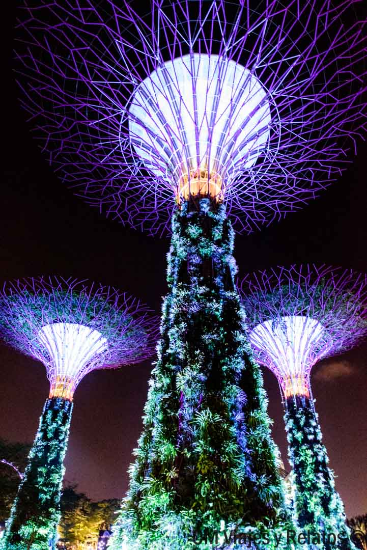 GARDENS-BY-THE-BAY-SINGAPUR