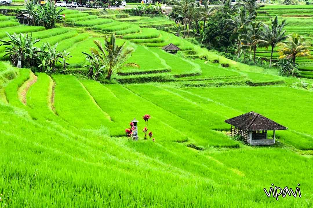 islas-para-viajar-Bali