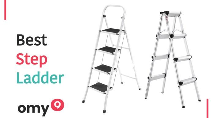 10 Best Step Ladder