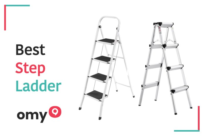 10 Best Step Ladder