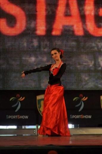 sportshow 2013 (15)