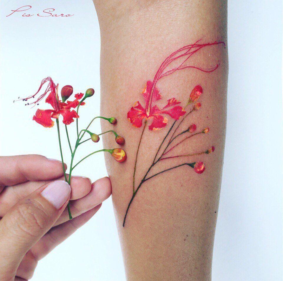 акварельная ботаника крымского тату мастера Pis Saro 65 фото