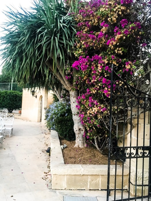 impossibly-imperfect-travel-blogger-malta-travel-europe-luxury-travel-corinthia-palace-hotel-and-spa-garden