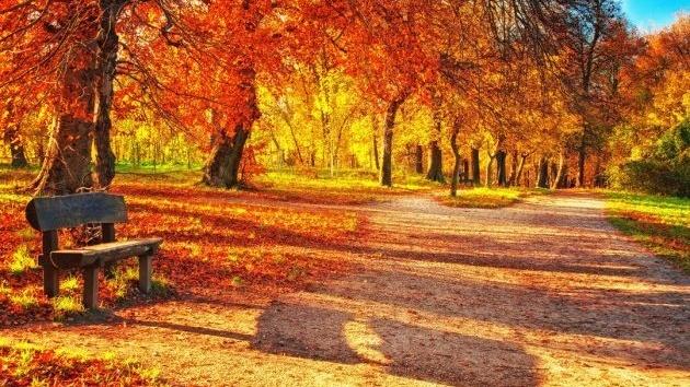 -осень.jpg