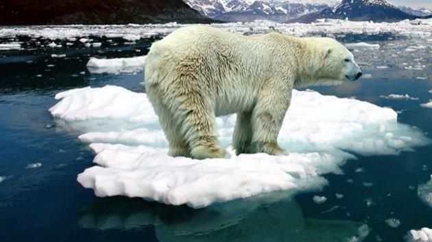 -Арктика.jpg