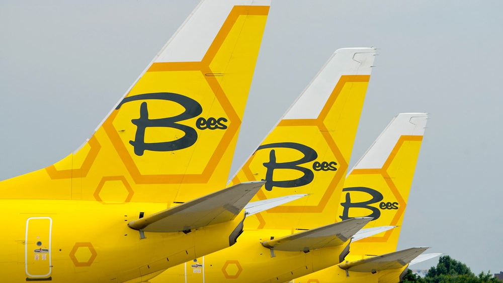 bees_planes_tails_zhulyany-Cropped.jpg