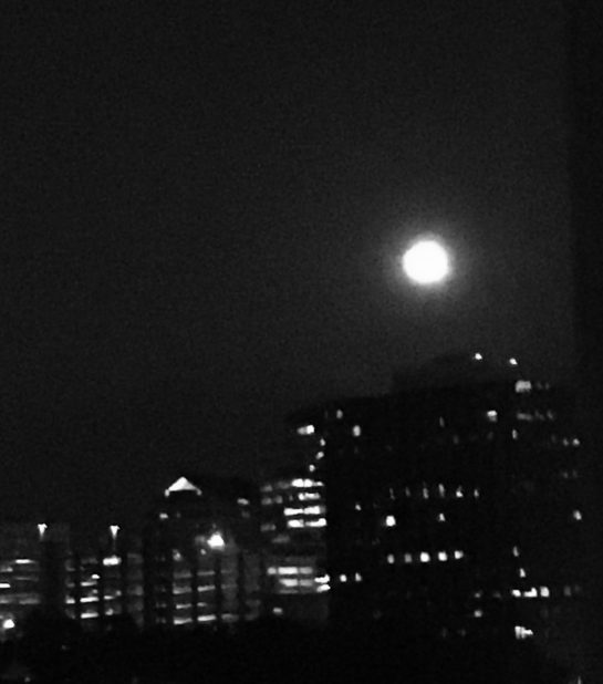 Moon gazers at Zeester HQ got a thrill when a full Beaver Moon appeared in the window November 2017