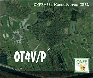 ONFF384_0001