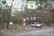 ONFF0532_005
