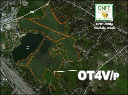 onff0204_001