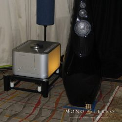 Luxman B-1000f monoblock and Vivid GIYA photo credit: Ron Resnick, Mono and Stereo