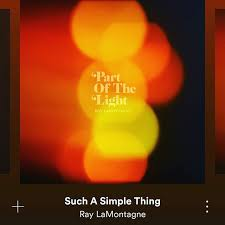 ray lamontagne_such a simple thing